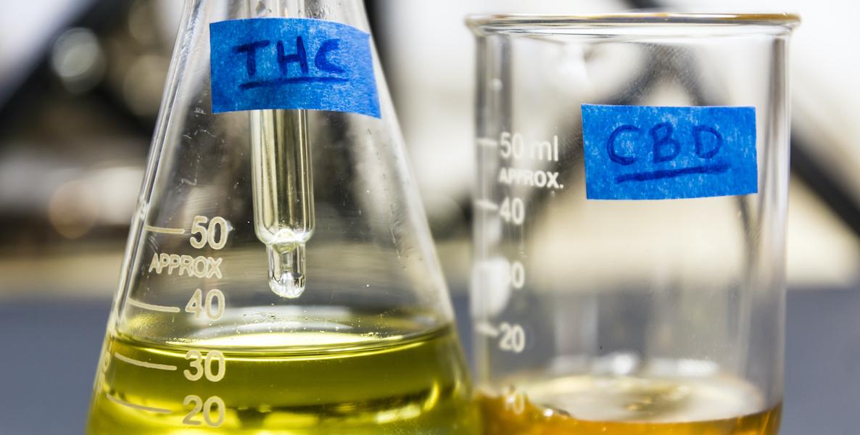 Wietolie en CBD-olie verschillen?