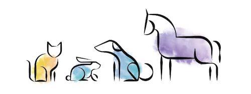 VetriHemp CBD-olie voor huisdieren